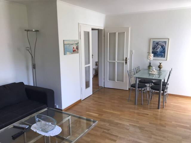 Fully furnished apartment in Zollikerberg