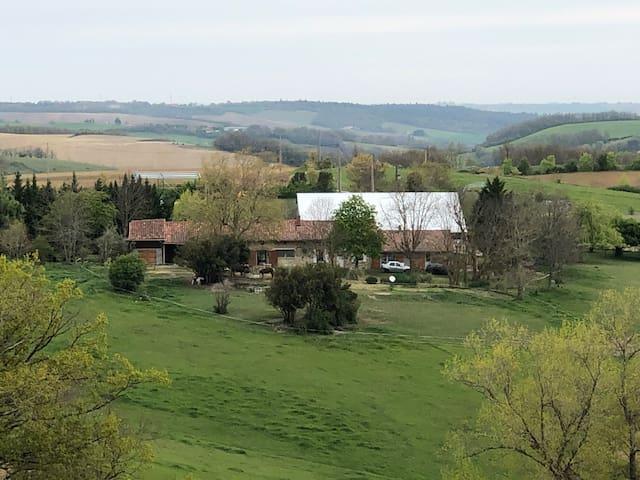 Domaine de Fipsila