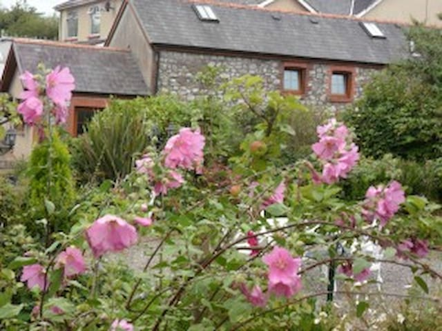Single room Stag Coachhouse BnB - Carmel - Bed & Breakfast