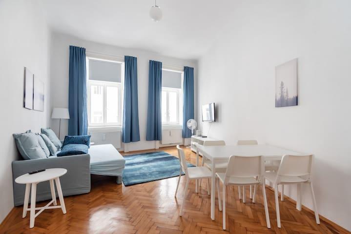 Appreciable city center apartment