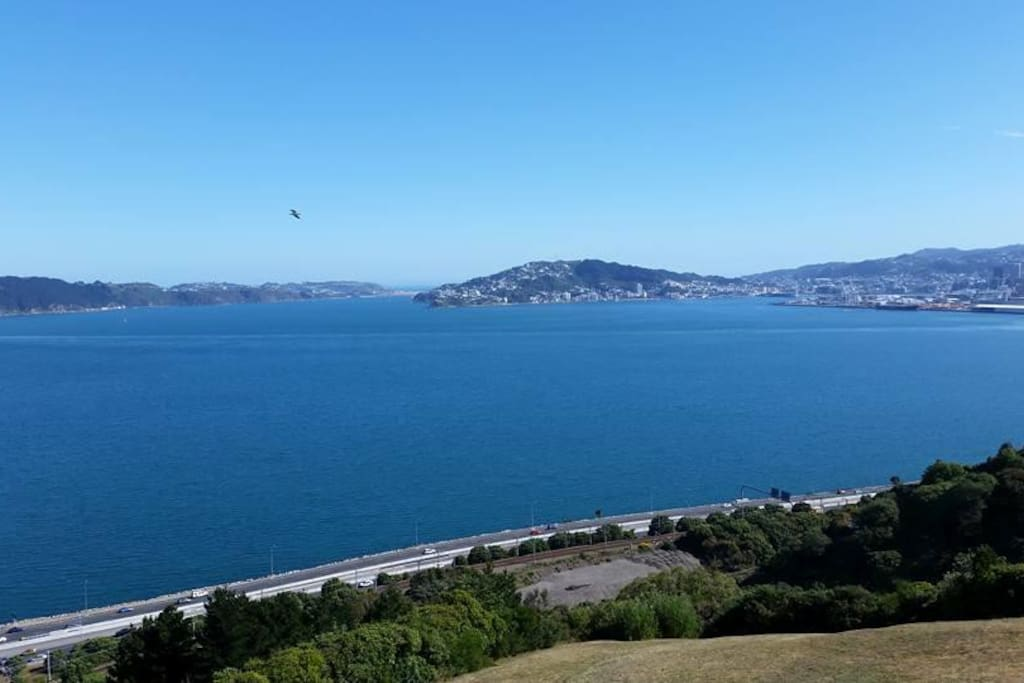 A fabulous views over Wellington - Bed & Breakfasts for