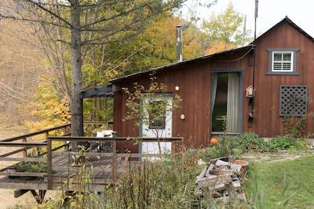 Slocan River Cozy Cabin