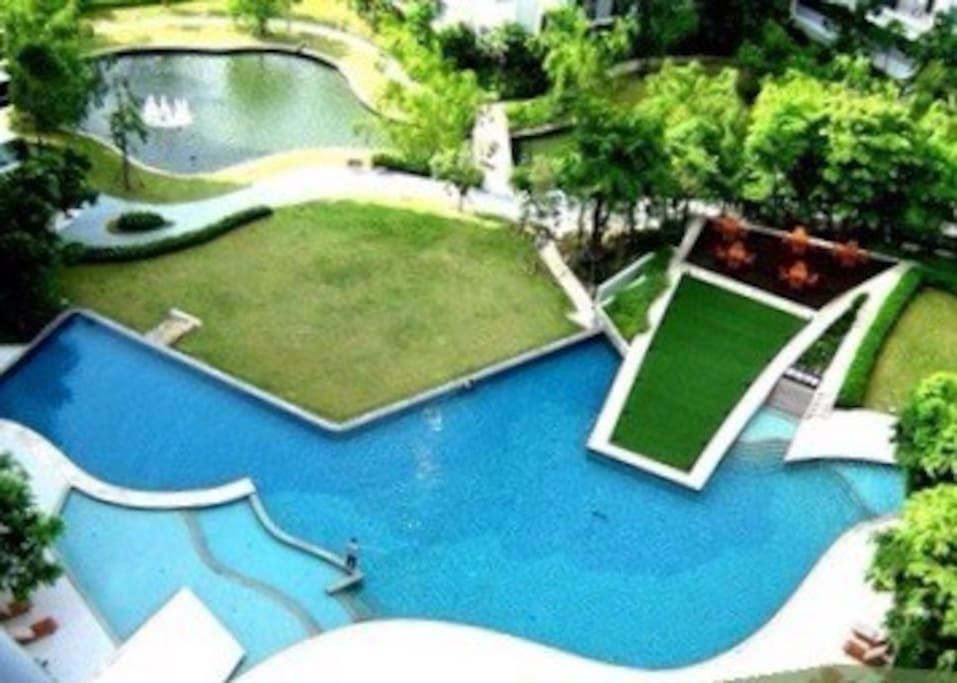 Natural and free form pool