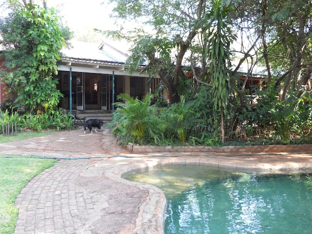 Pool and Entrance set in Peacefull Tropical Garden.