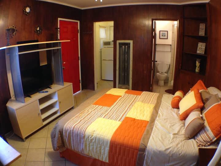 (((Lower-Price))) Vintage Cabin Studio w/kitchen