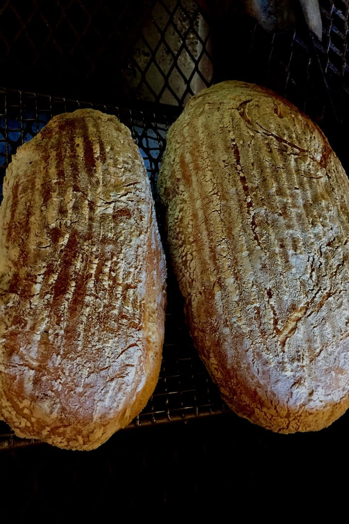 Sourdough bread from our class