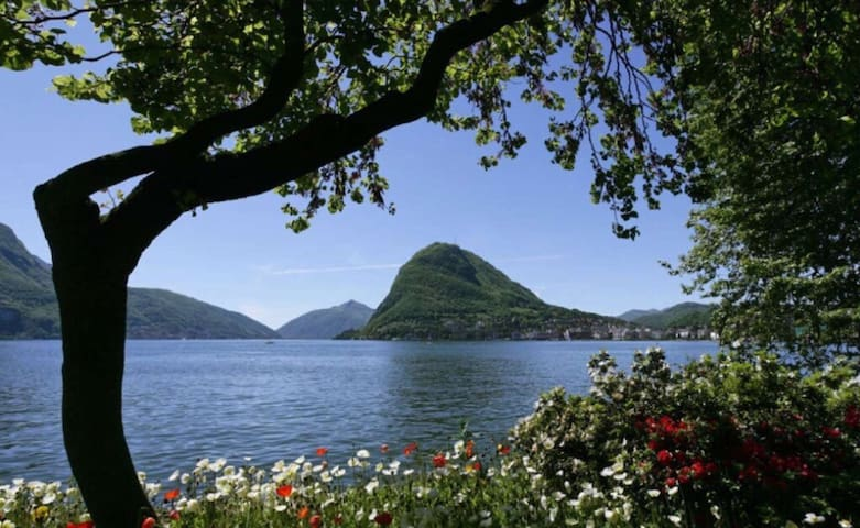 "The ""Oase"" high above Lugano B&B"
