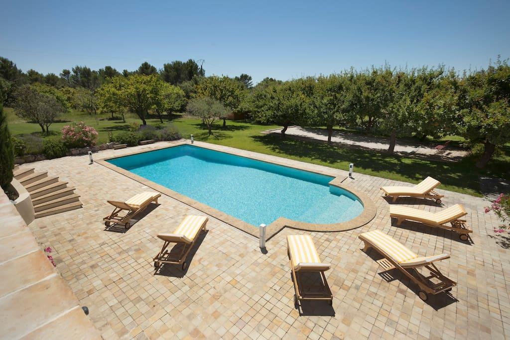 Vue générale de la piscine, 12X5 m avec de grands espaces autour