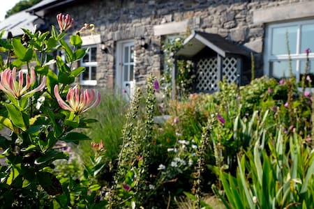 The Old Barn B & B - Suite 1 - Llanrhystud - Dom