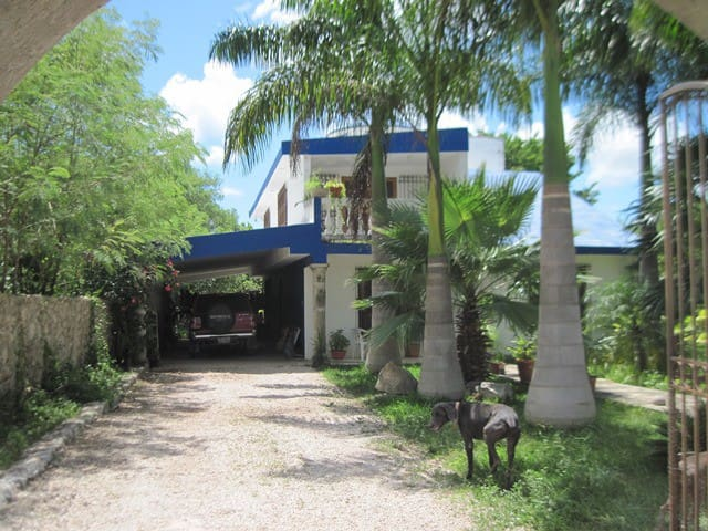 Cozy House in the Mayan Jungle - Progreso