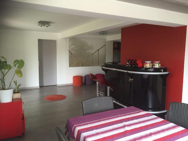 Maison rénovée 180m2+jardin - Orthez - Dům