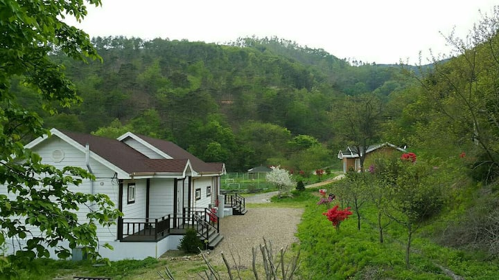 칠갑산 야생화 언덕 위(한달살이)
