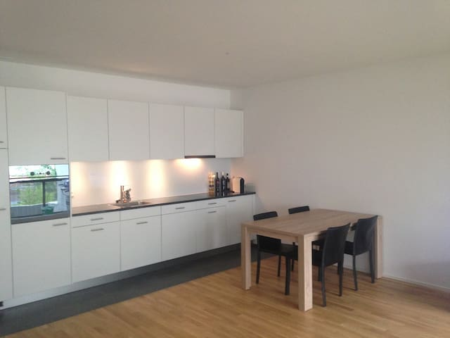 Spacious room in urban environment - Zug - Apartemen