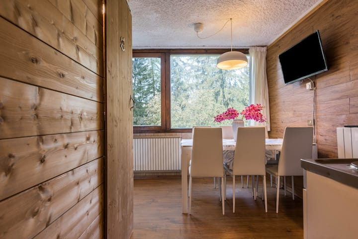 """Comfortable Studio Apartment """"Appartamento Volpi"""" in Scenic Mountain Region with Mountain View, Lift & Playground; Parking Available"""