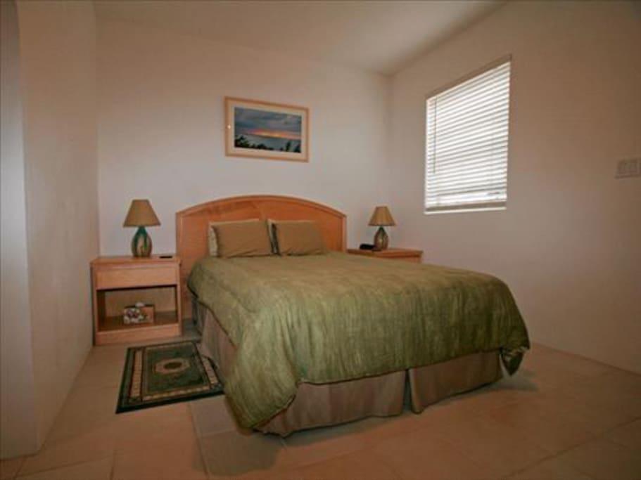 Bedroom (Queen Bed) with plenty of wardrobe space