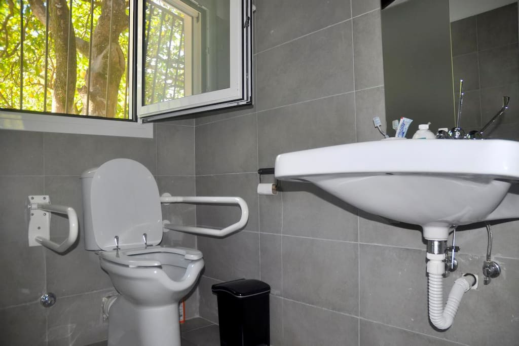 Bathroom of the Accesible Apartment