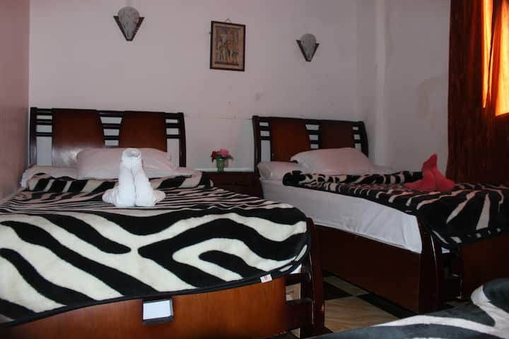 Travel Joy Hotel-3 Bed private Room Downtown Cairo