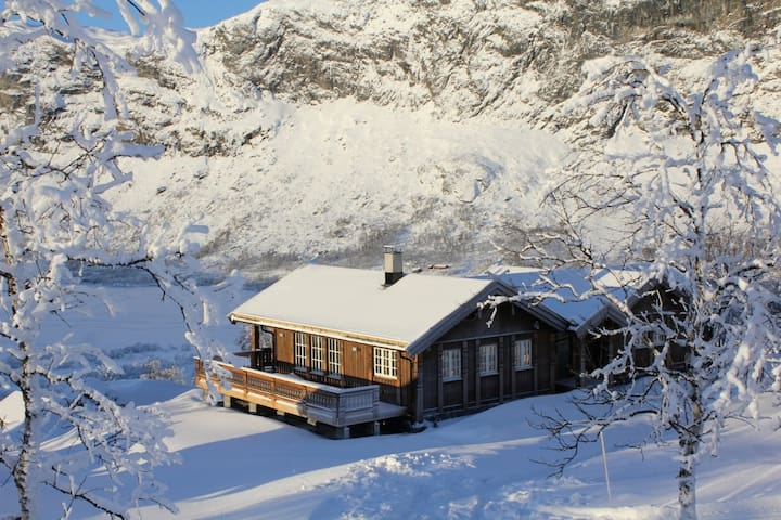 Spacious and exclusive mountain cabin, ski in/out - Vang kommune - Srub
