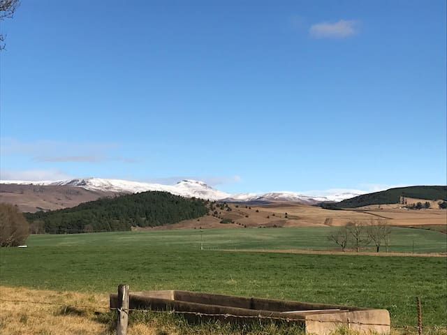 View of Snow on the berg
