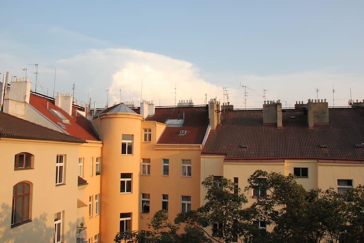 Prague's Best - Vinohrady - Praag - Appartement