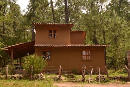Cabaña Pino ...en medio del bosque - Cabin