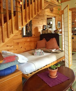 shared open 1 room cabin with loft