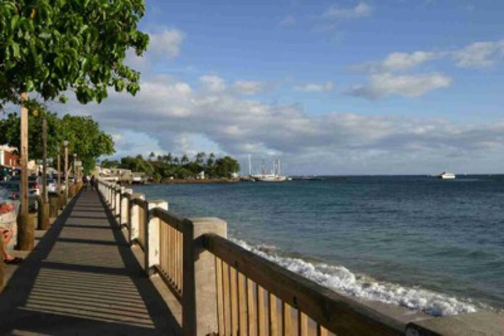 Bed And Breakfasts In Lahaina Maui