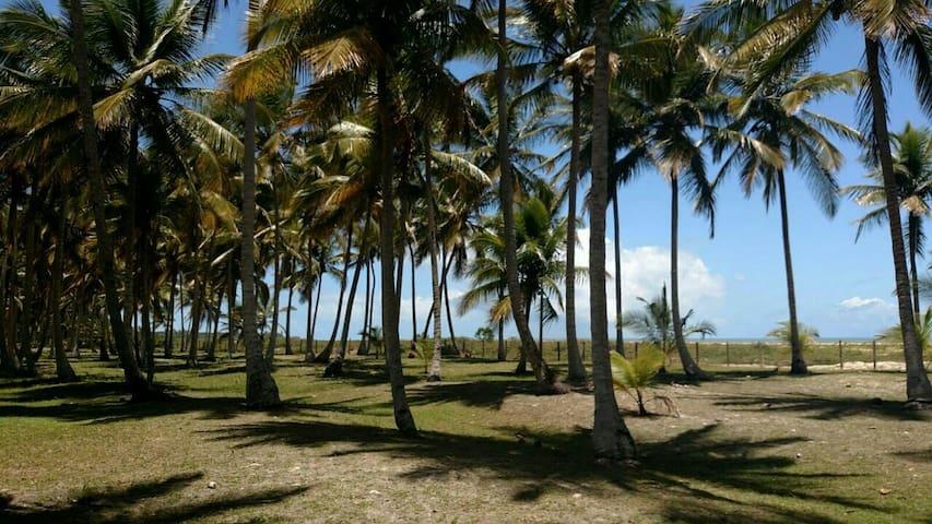 Casa em exclusiva praia paradisíaca - DISTRITO DE SANTO ANDRÉ, CIDADE SANTA CRUZ DE CABRÁLIA - Villa