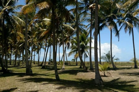 Casa em exclusiva praia paradisíaca - DISTRITO DE SANTO ANDRÉ, CIDADE SANTA CRUZ DE CABRÁLIA - Vila