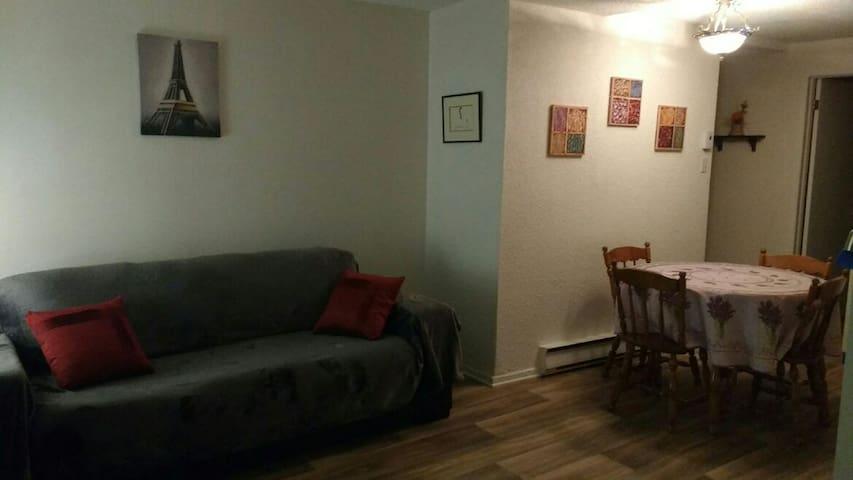 Appartement 1 chambre/parking/terrain de jeux