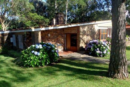 Casa en alquiler por temporada, Punta del Este - Ház