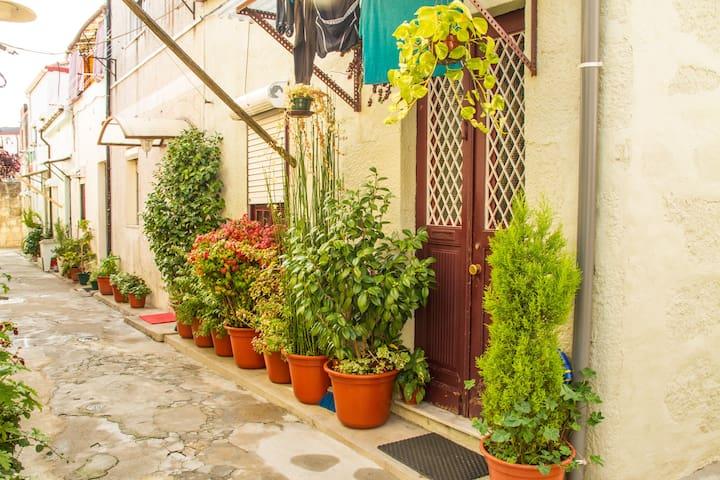 Live like a local - bright, spacious and cozy - Porto - House