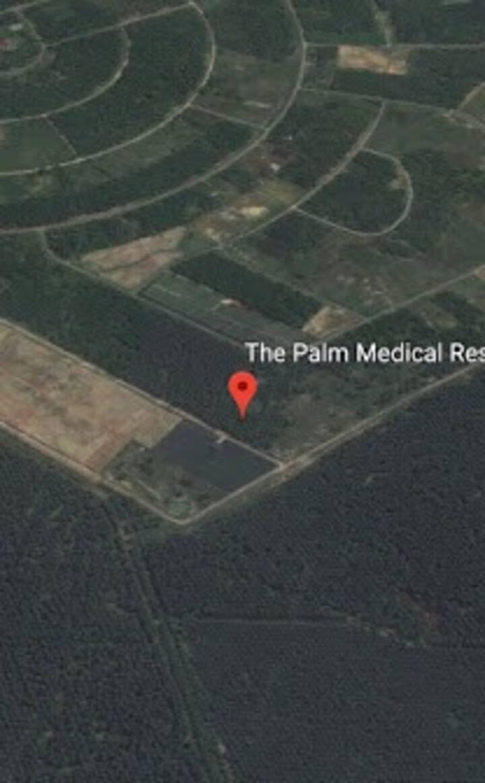 The Palm Retreat Resort