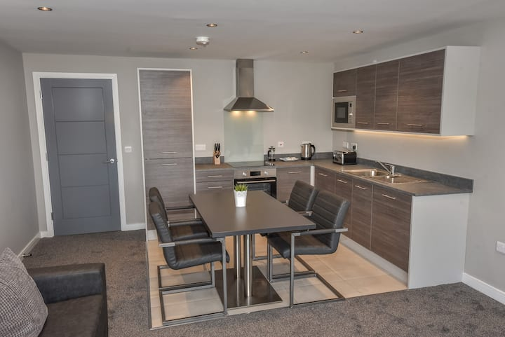 Spacious apartment close to Ulster Museum