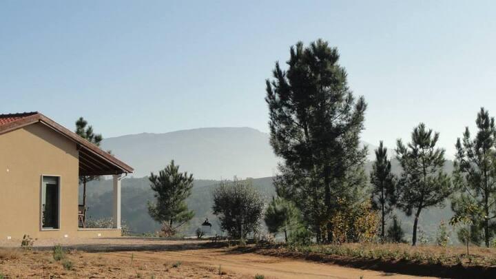 Casa da Monte Ruivo