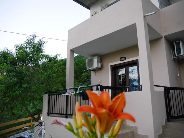 studios in thassos 150meters from the beach