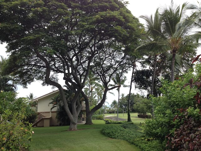Tranquil Oasis Town & Country Condo - Kailua-Kona - Wohnung