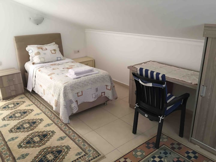 Spacious room w/ single bed and pull out sofa.