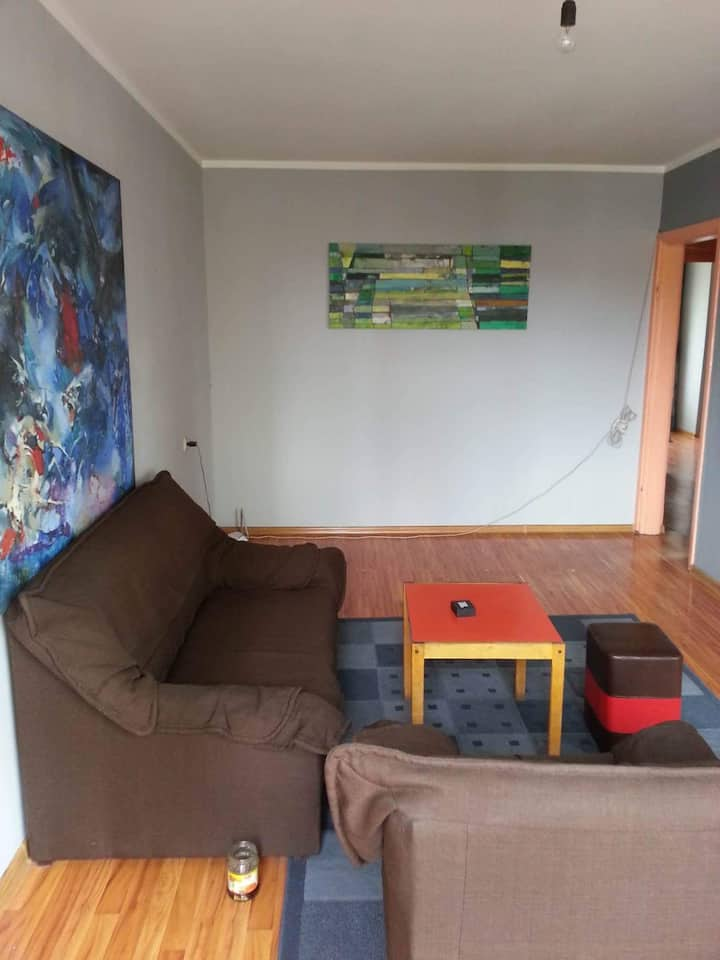 Spacious 2 bedroom apartment near downtown