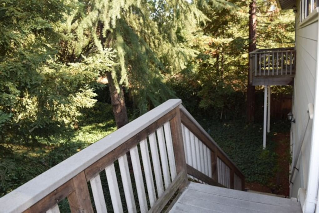 Top of stairs - surrounded by beautiful trees!
