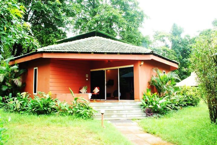 Habitat Room @ Mollem - Mollem - Hospedaria