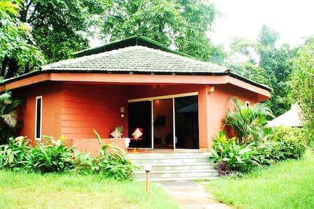 Habitat Room @ Mollem - Mollem - Gästehaus