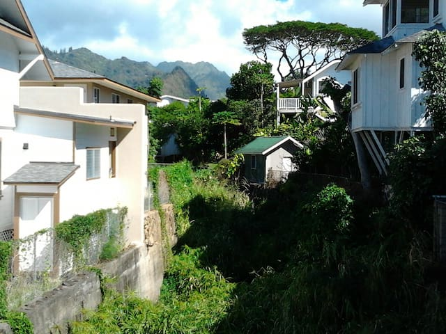 Honolulu- Tutu's Rm (w/exclusive whole house use)