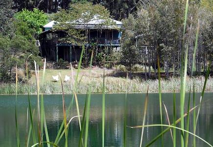 Mother of Ducks at Cloudlake - Ravensbourne - Hus