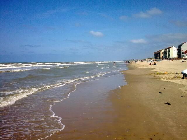 Appartement près de la plage - Bray-Dunes - Huoneisto