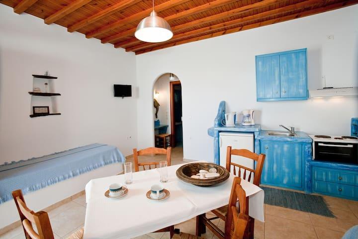 Antique Blue - Tinos - Lakás