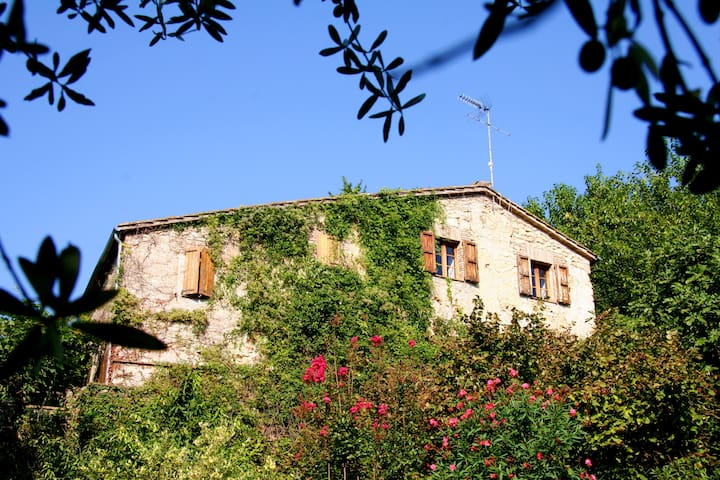 700 year old farmhouse with pool - Collicello