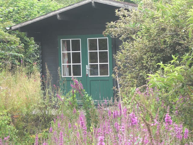 Cabin on smallholding - Herefordshire - Srub