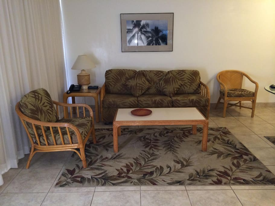 Living room with pull out cou