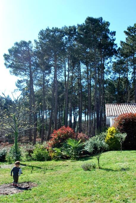 Le jardin et sa vue
